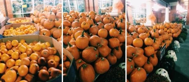 halloween-aboboras-brave-new-rome